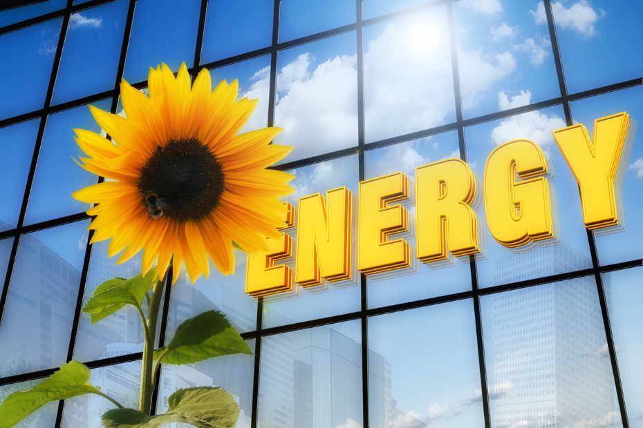 Can Renewable Energy Power The World - featured image